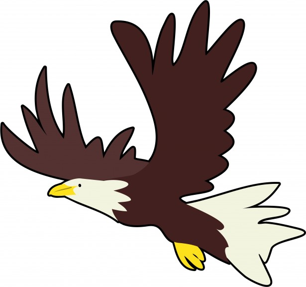 graphic freeuse library Bald free stock photo. Eagle clipart