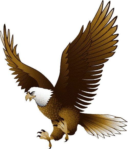 png transparent stock Free eagle cliparts download. Gallery clipart eagel.