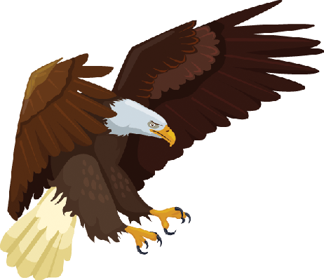 png library stock Eagle clipart. The arts image pbs