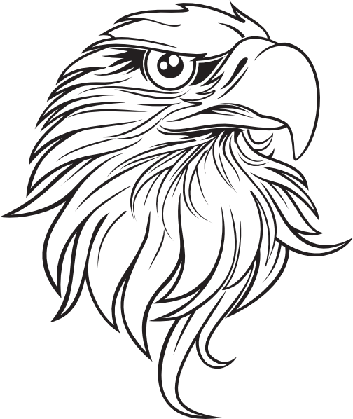 clip art library stock Bald Eagle Outline Drawing at GetDrawings