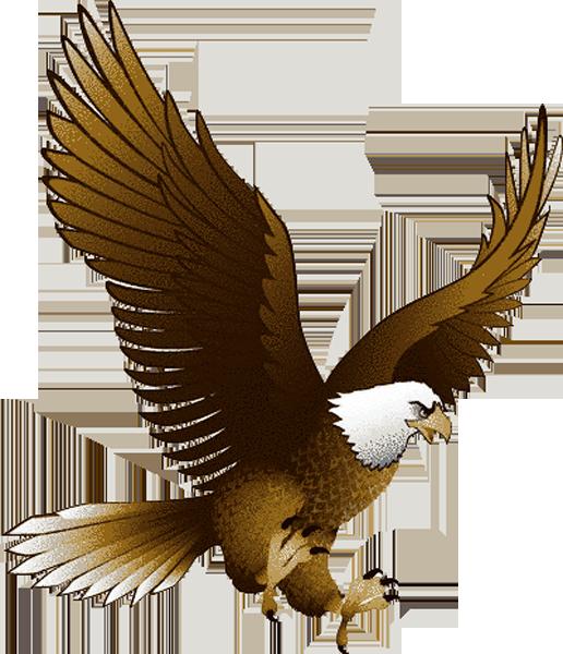 clip transparent library Eagle PNG image