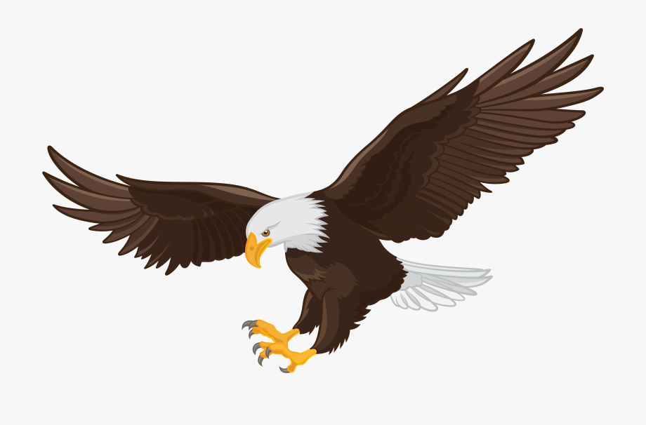 clip art royalty free library Eagles clipart. Bald eagle clip art.
