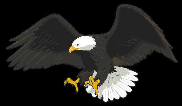 clipart transparent stock Png clip art image. Toucan clipart eagle