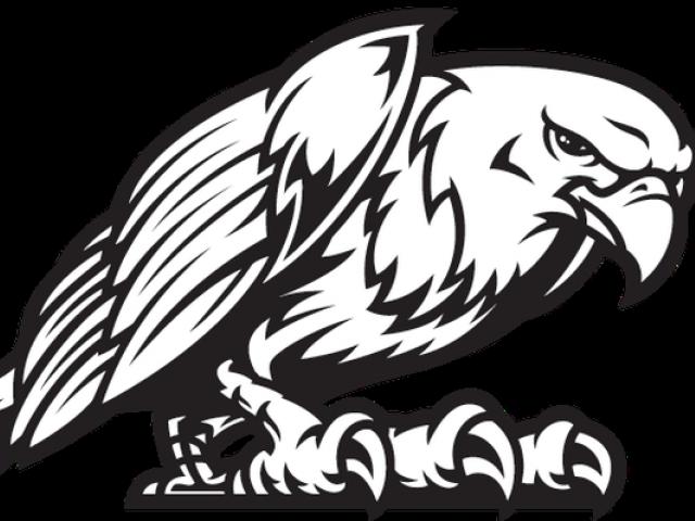 clip download Falcon cliparts free download. Eagles clipart mascot