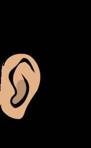 vector transparent Clip art at clker. Ear clipart
