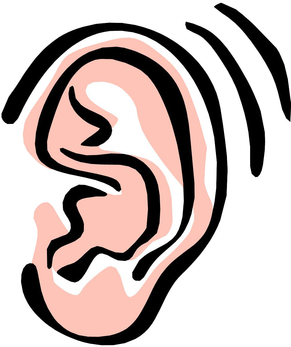 svg royalty free library Images of Ear Clipart For Kids