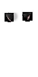 clip art transparent download Black cat clipart png