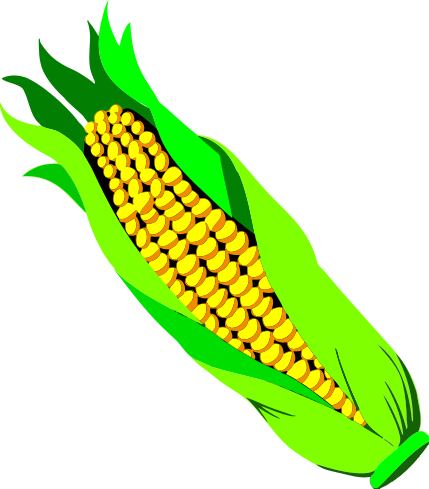 png free library ears of corn clipart #61641220