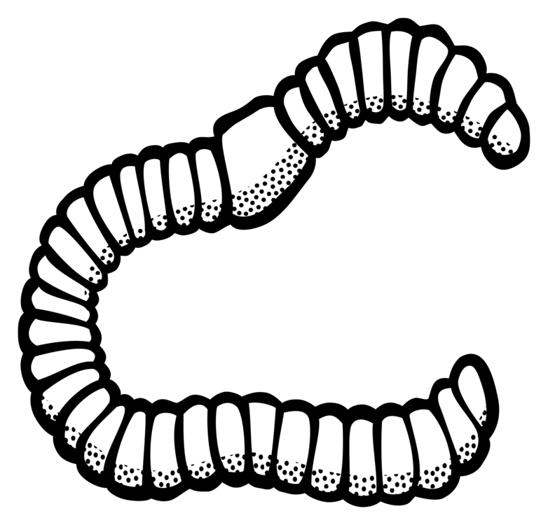 graphic transparent download Black and white free. Earthworm drawing.