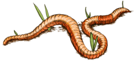 stock Earthworm drawing. Draw earth load stickpng.