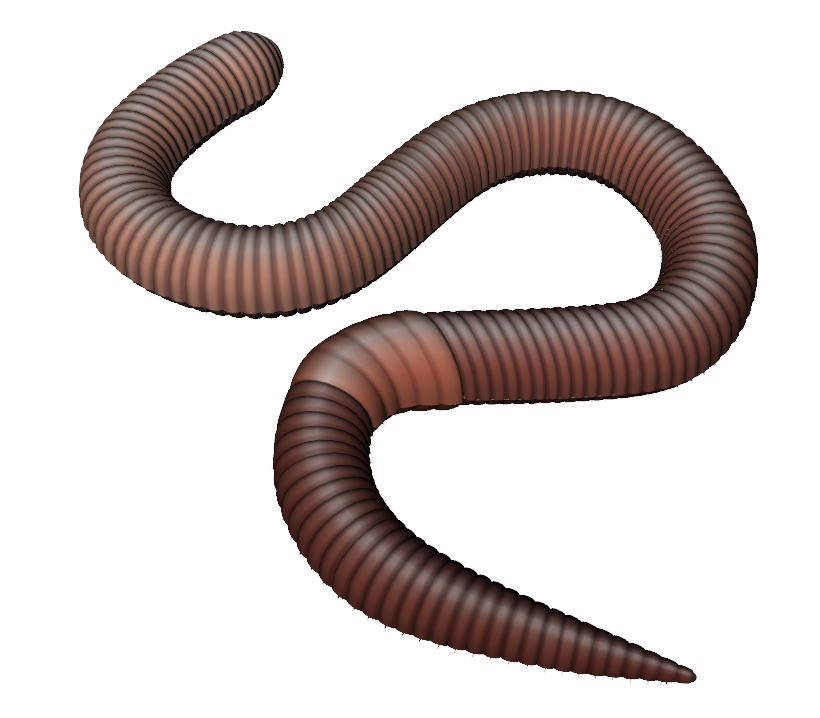 clip transparent stock Worms PNG images free download