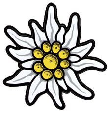 banner royalty free download edelweiss flower