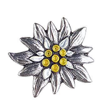 clip free stock edelweiss drawing german flower #145896676