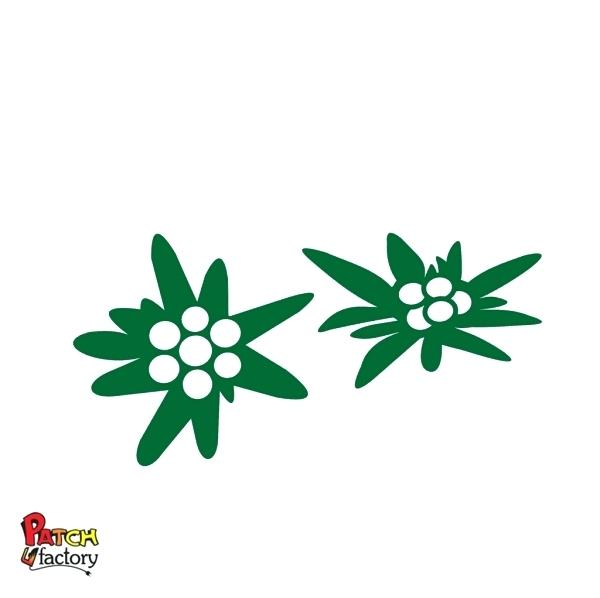 banner black and white library Edelweiss Flower Drawing