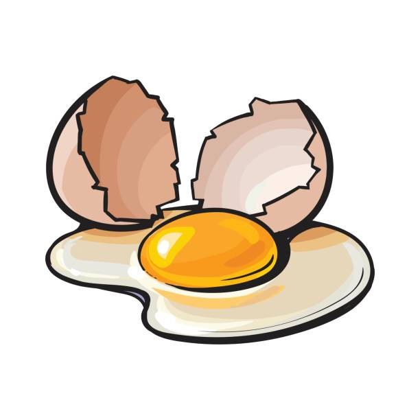 svg transparent stock Egg clipart. Free download clip art