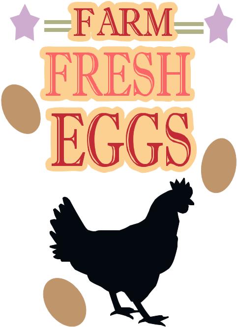 clipart transparent Farm Fresh Eggs SVG