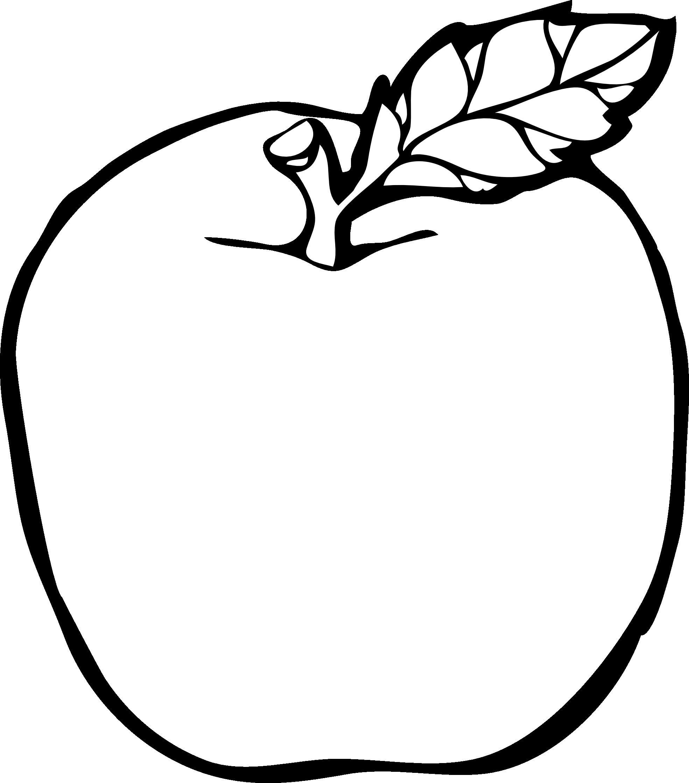 vector transparent download Image result for apple drawing