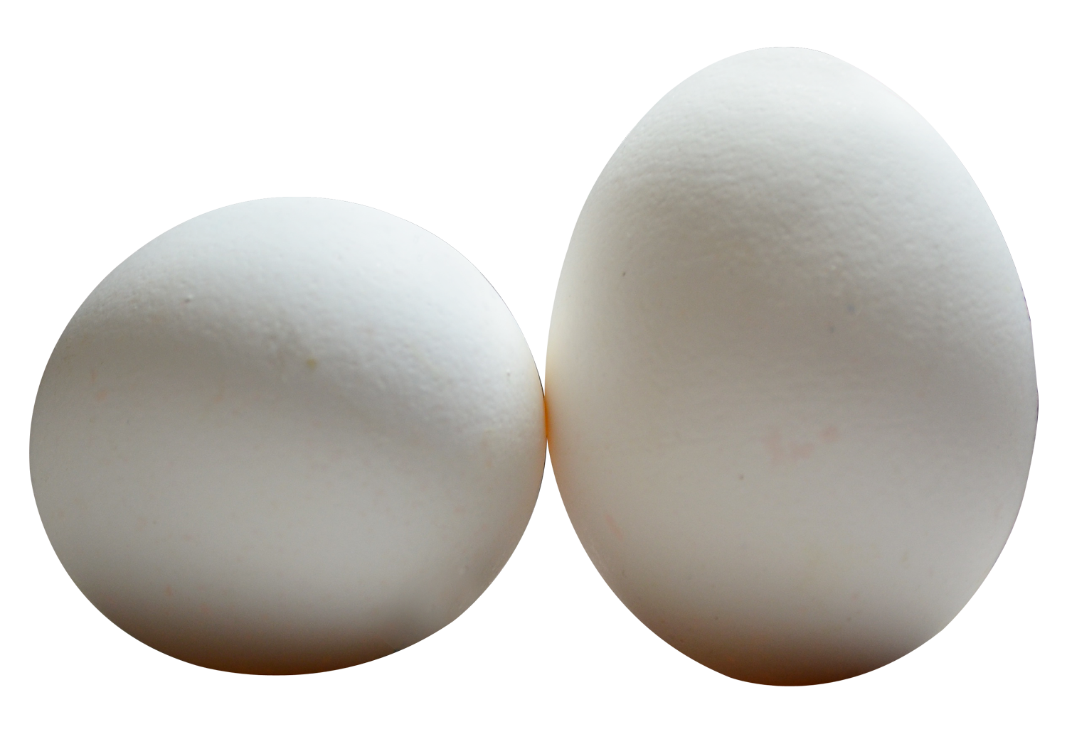 clipart stock Eggs transparent. Egg png images pngpix