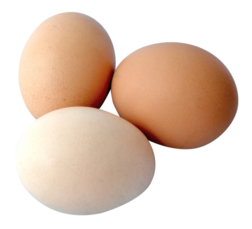 svg royalty free download Eggs transparent. Png image pngpix