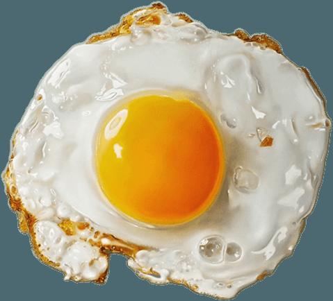 jpg stock Fried Egg Clipart