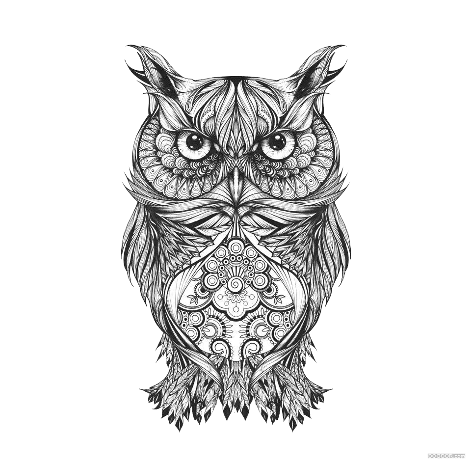 graphic library library Drawing owls sketch. Owl visual arts black