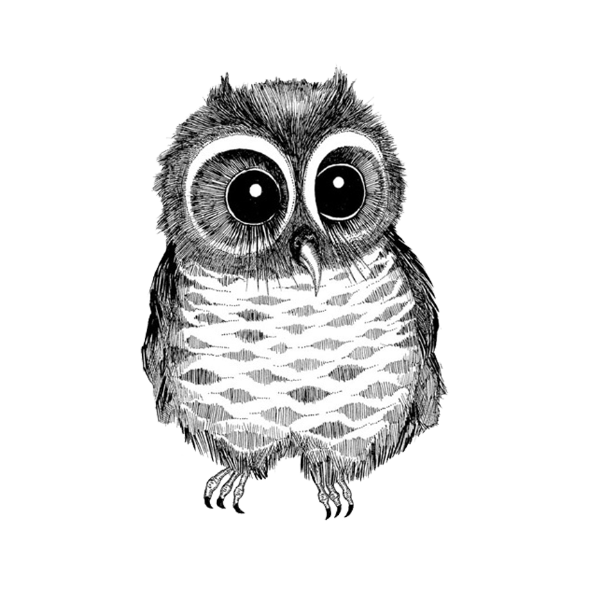 svg free stock Drawing charcoal owl. Bird black and white