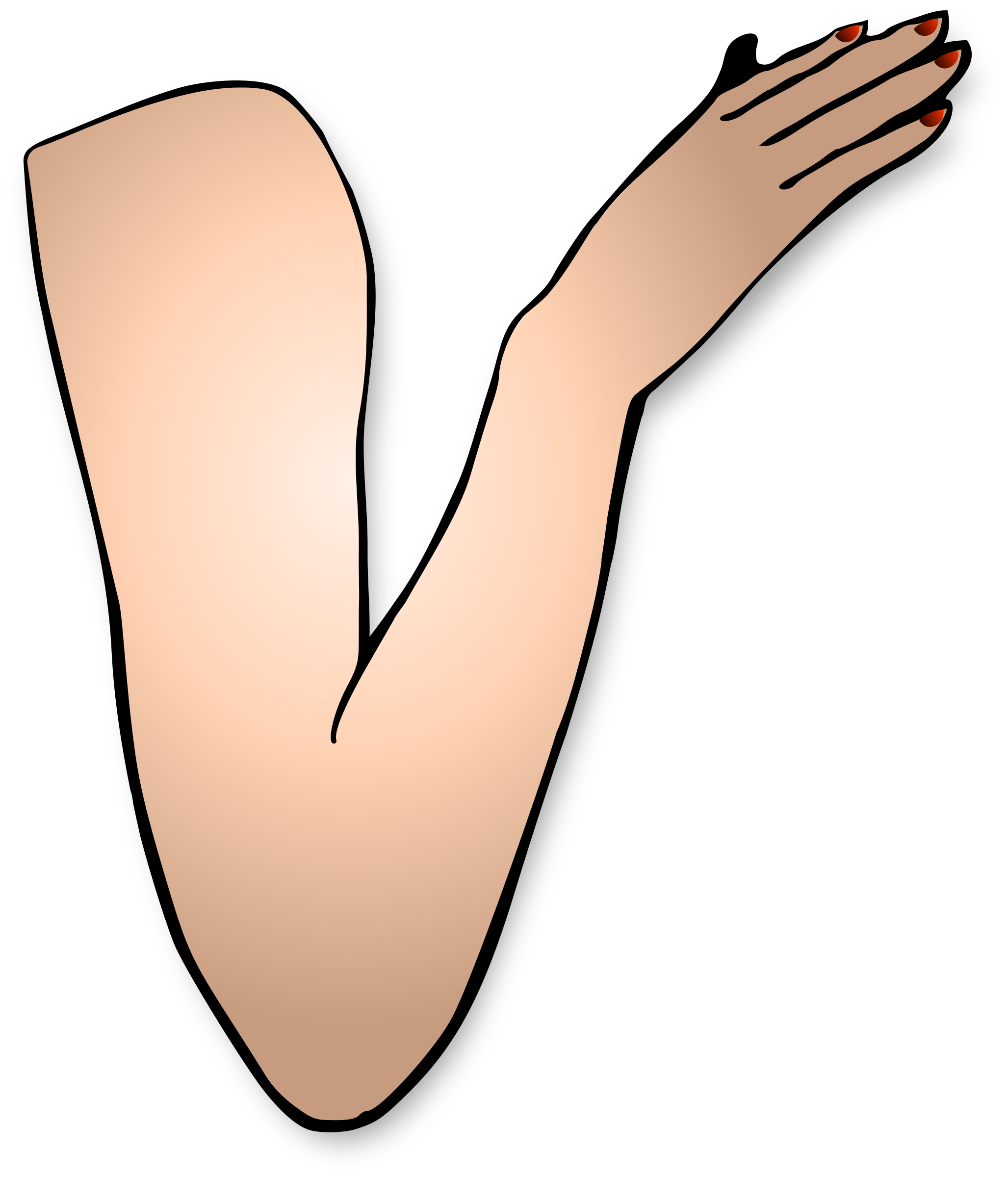 jpg free Arm png images free. Arms transparent