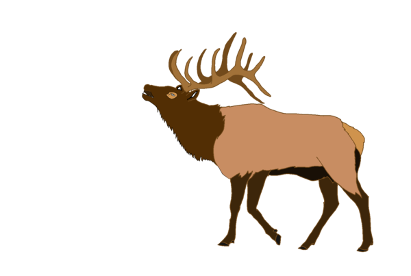 image royalty free download Elk clipart. Free images at clker