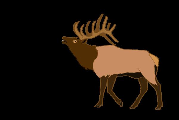 image royalty free download Elk clipart. Free images at clker.