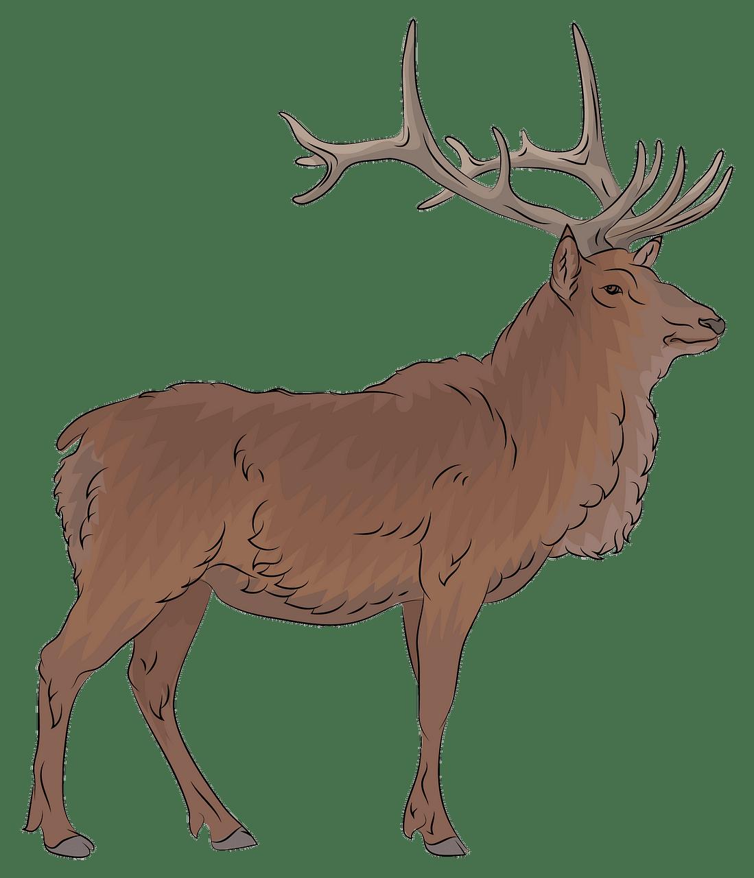 picture freeuse stock Elk clipart. Free download creazilla .