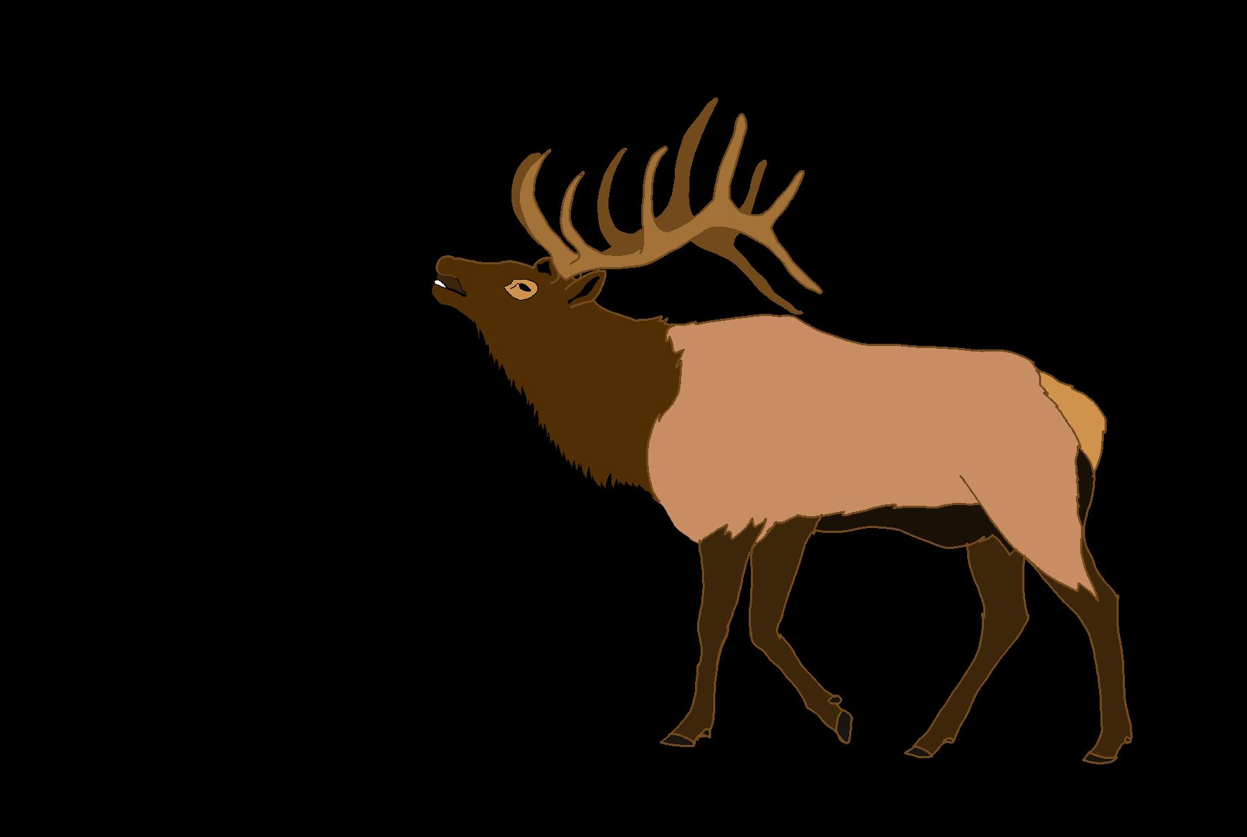 svg royalty free stock Elk clipart. Deer clip art cl.