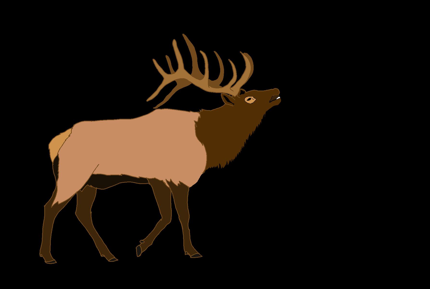 banner freeuse library Png . Elk clipart