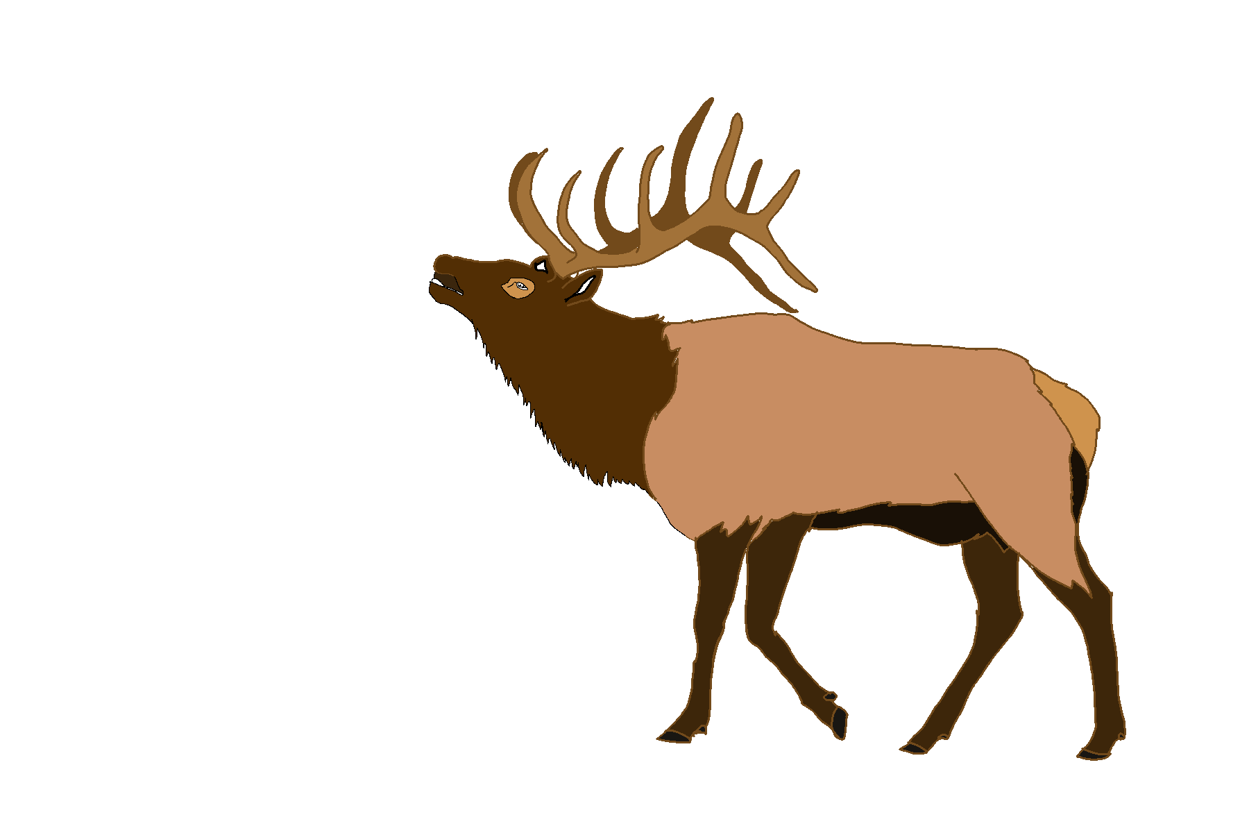 picture transparent stock Elk clipart. Top free image