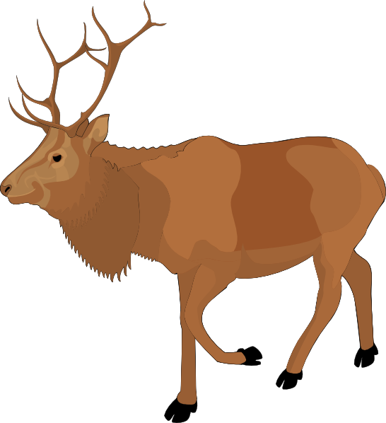 png royalty free download Moose clip art free. Elk clipart muscular