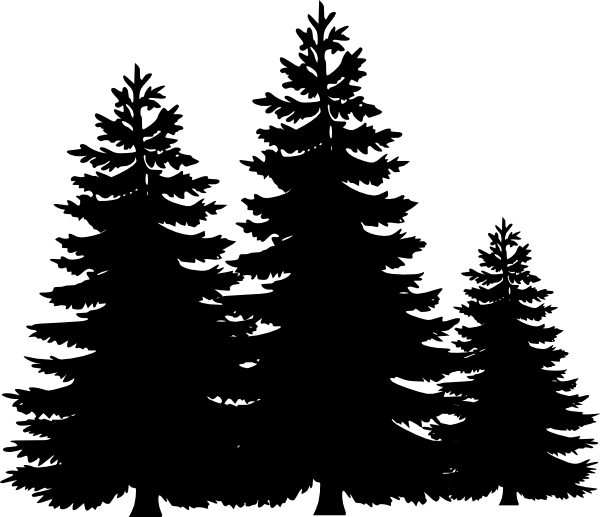 picture library library Tree stencil google search. Evergreen clipart.