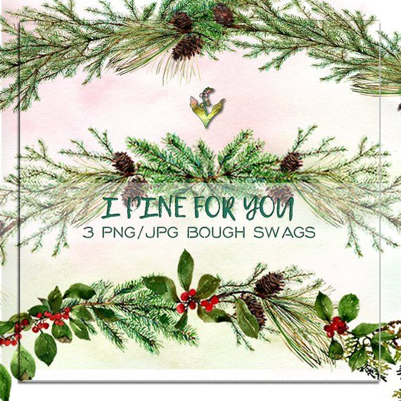 clip art black and white stock Evergreen clipart swag. Pine bough christmas handpainted
