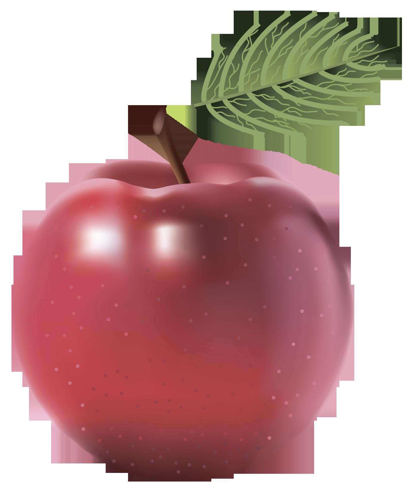 free download Vector apples transparent. Apple fruit clipart eye