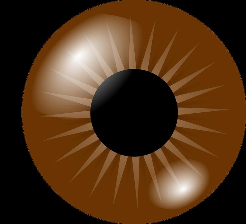 vector library Eyeball Clipart craft