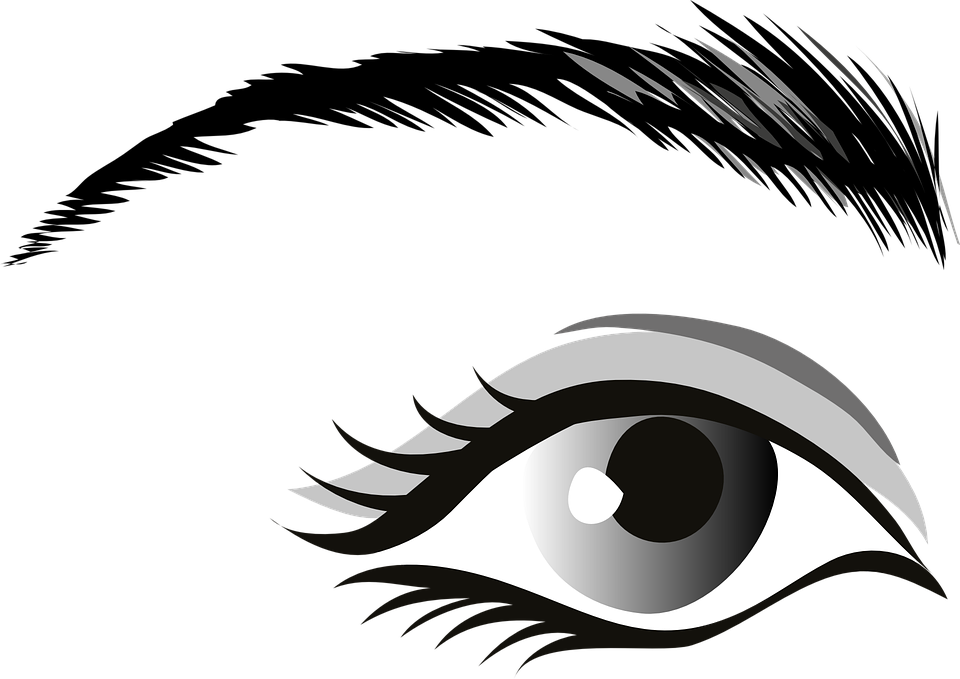 picture library library Eyeballs clipart kilay. Eyebrow cliparts free download