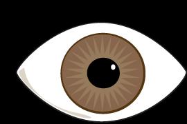 banner free download Eyelash panda free images. Eyeballs clipart kilay
