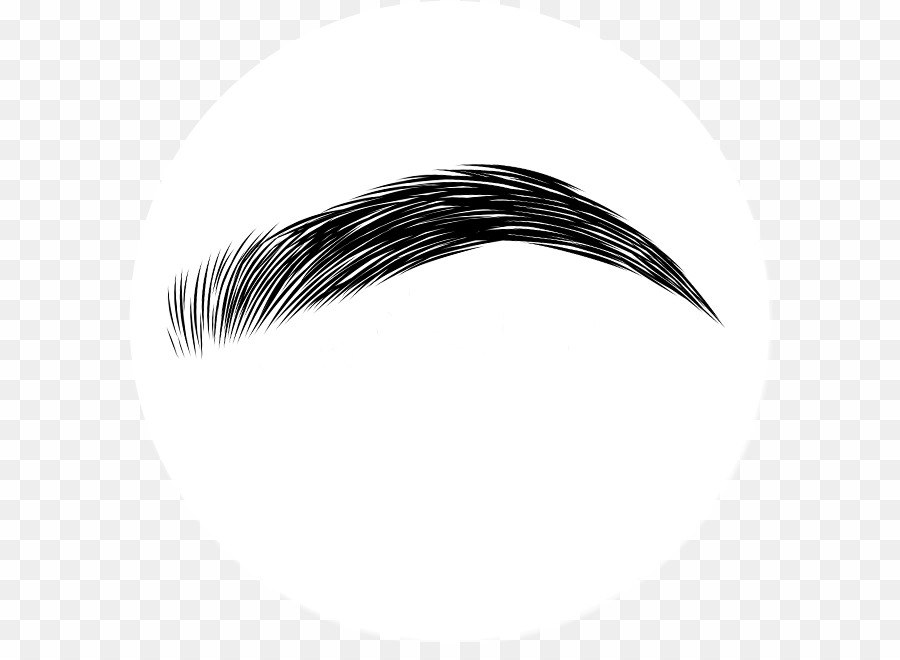image library Eyebrows png transparent download. Eyebrow clipart.