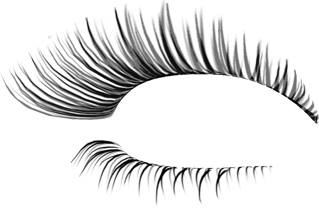 image freeuse download Eyelash extensions Cosmetics Clip art