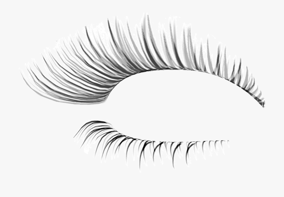 vector royalty free stock Eyelash clipart. Eye lash extension fake.