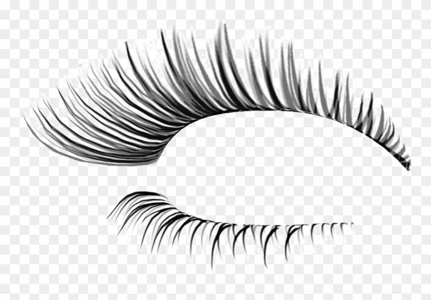 svg freeuse download Eyelash clipart esthetician. Transparent background eyelashes