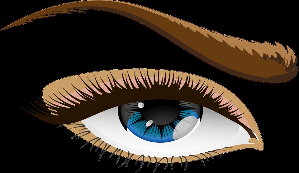 jpg royalty free stock Eyeballs clipart kilay. Eyebrow frames illustrations hd