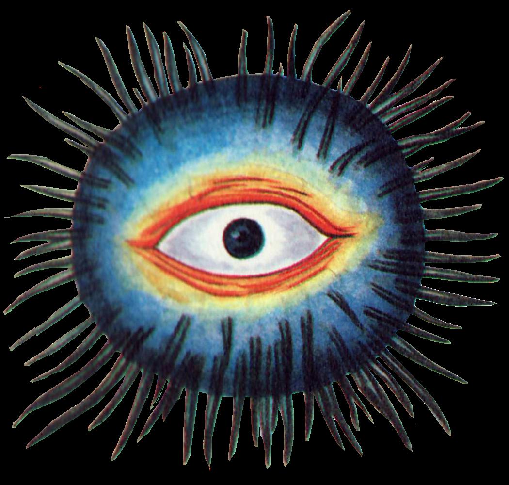 free Eyelash clipart fierce. Eyelashes transparent free