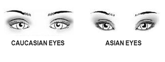 jpg black and white Types drawing different eye shape. Crease and contour eyeshadow