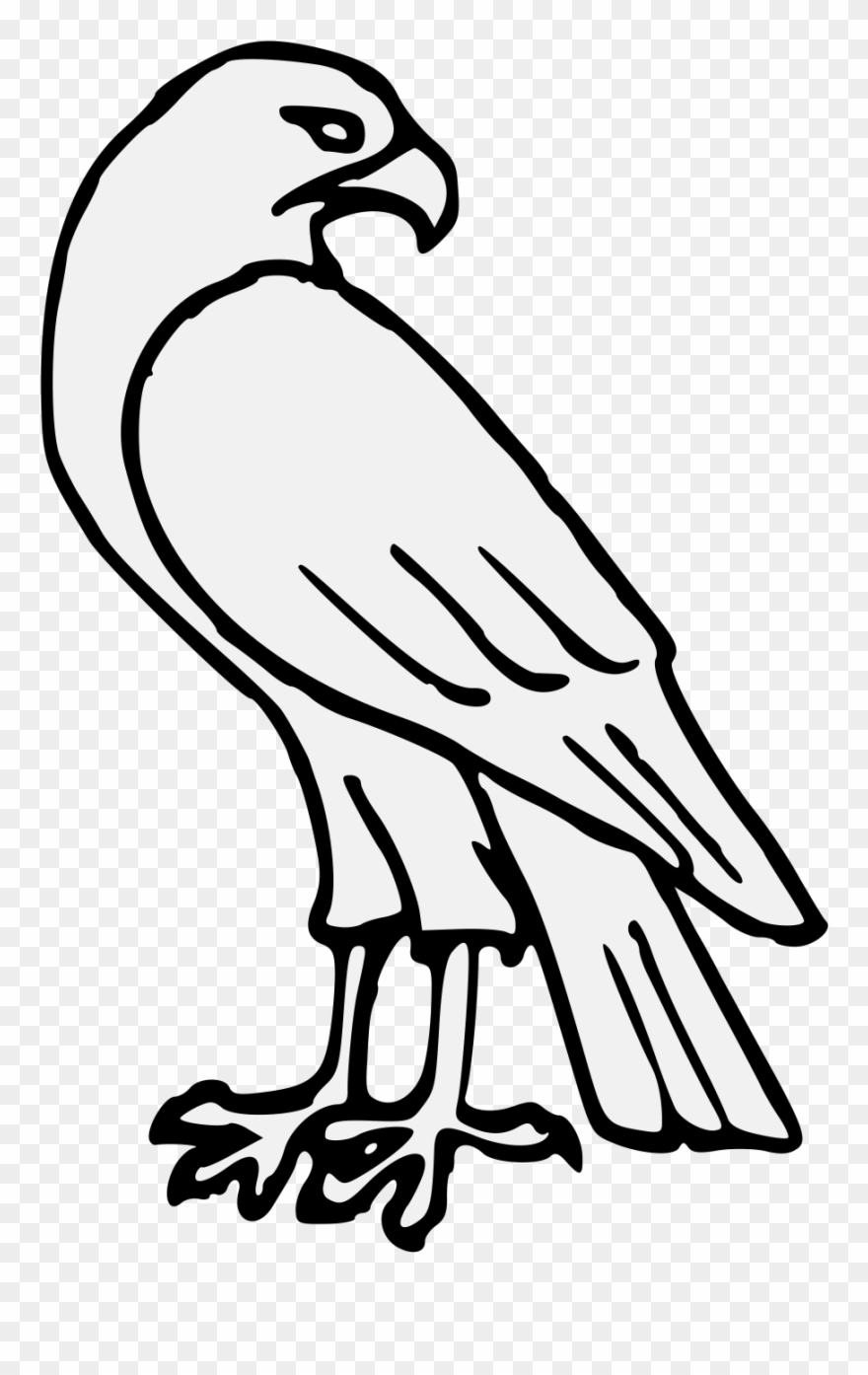 picture free download Falcon clipart. Pdf easy drawing pinclipart.