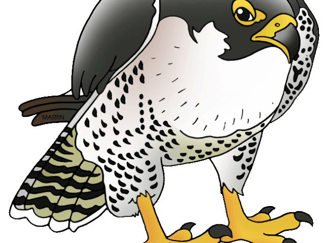 picture royalty free stock Prairie free on dumielauxepices. Falcon clipart.
