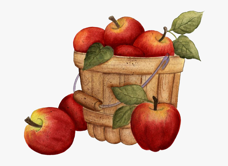 clipart transparent stock Clip art freeuse stock. Fall apples clipart